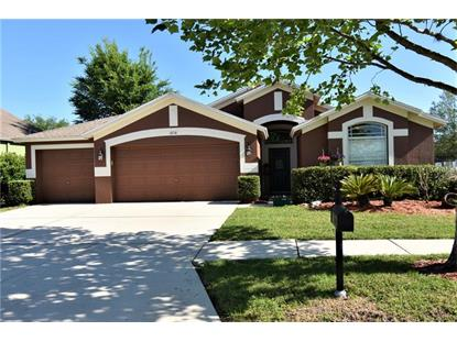 6718 RUNNER OAK DR, Wesley Chapel, FL