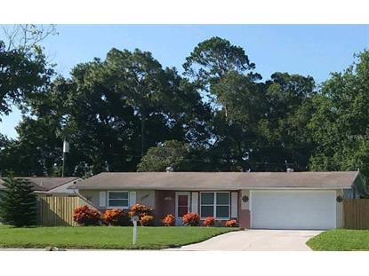 7324 RHINEBECK DR, Port Richey, FL