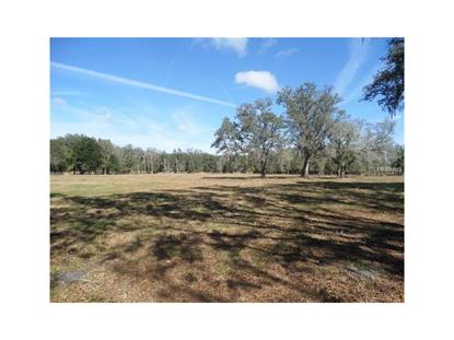 OLD TAMPA HIGHWAY Kissimmee, FL MLS# G4831392
