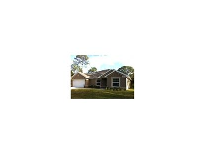 2217 ANGEL FISH LOOP, Leesburg, FL