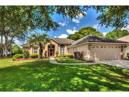 7006 SHADOWOOD CIR, Mount Dora, FL