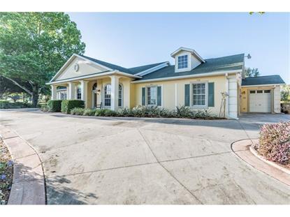 montverde fl real estate for sale