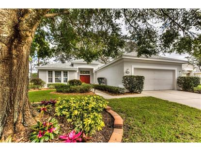 8001 PINE HOLLOW DR, Mount Dora, FL