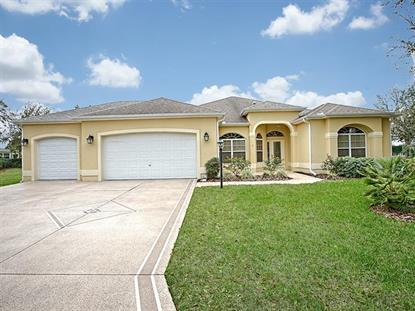 2933 LARRANAGA DR The Villages, FL MLS# G4853156