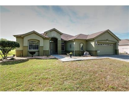13500 97TH TERRACE RD, Summerfield, FL