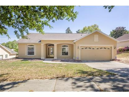 833 ELM FOREST DR, Minneola, FL