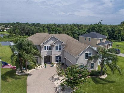 3463 CREEK RUN LN, Eustis, FL