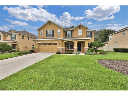 30148 JUTLAND CT Mount Dora, FL MLS# G5006937