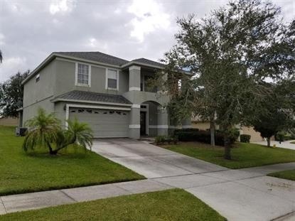 13135 COLDWATER LOOP, Clermont, FL