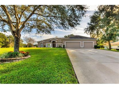 3827 OAK POINTE DR Lady Lake, FL MLS# G5009921