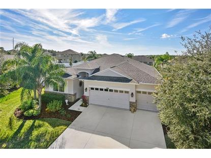 5717 TARLETON WAY Mount Dora, FL MLS# G5010411
