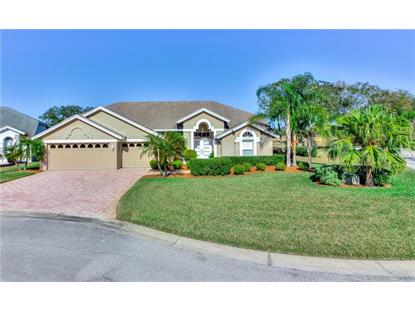 4406 FAIRWAY OAKS CT, Mulberry, FL