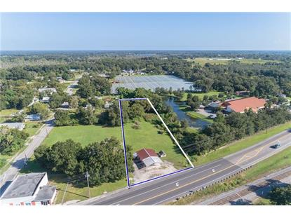 14240 DR MARTIN LUTHER KING JR BLVD Dover, FL MLS# L4903582