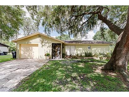 5037 BLACK BIRCH TRL Mulberry, FL MLS# L4909763