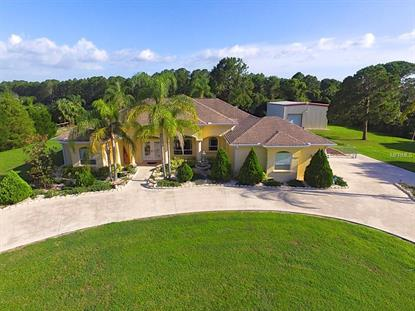 3239 ALBIN AVE North Port, FL MLS# N5909124