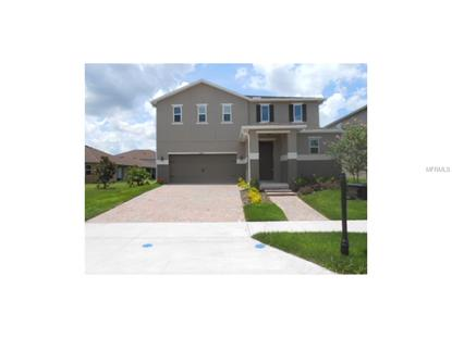 11425  WAKEWORTH ST  Orlando, FL MLS# O5396307