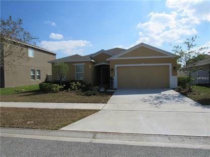 720 BLACK EAGLE DRIVE, Groveland, FL