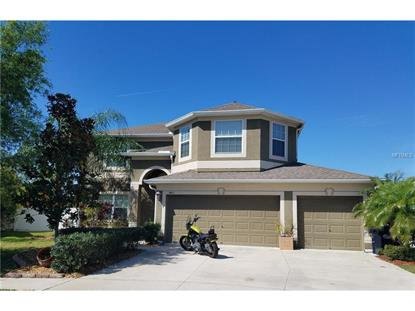 3453 MARMALADE CT, Land O Lakes, FL