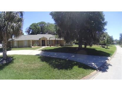 2334 INDIAN MOUND TRL, Kissimmee, FL