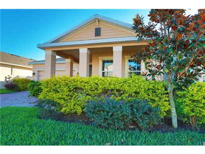 1539 CATERPILLAR ST, Saint Cloud, FL