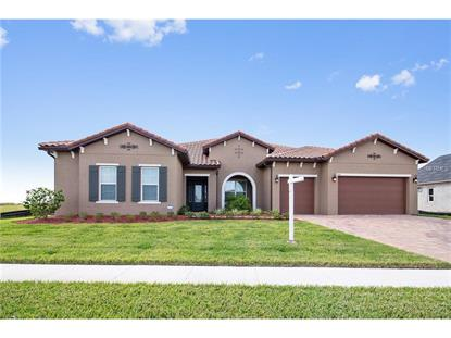 4384 SUMMER BREEZE WAY Kissimmee, FL MLS# O5535444