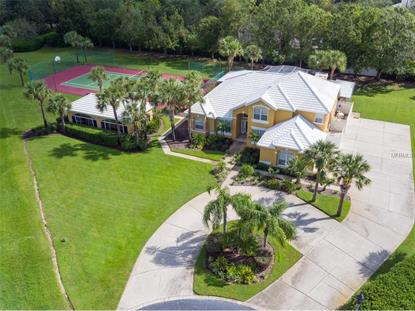 2809 PINNACLE CT, Windermere, FL