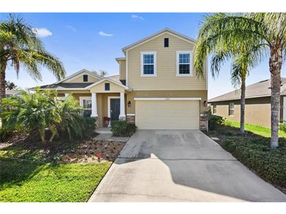 3523 OAK CLIFF BLVD, Tavares, FL