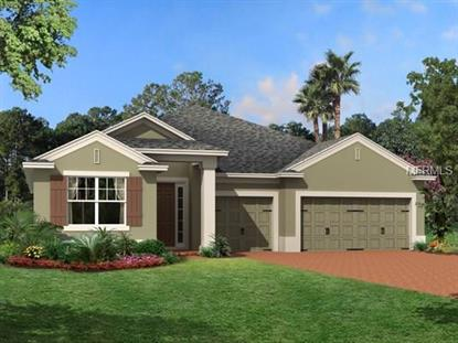 31920 GEOFF WAY, Sorrento, FL