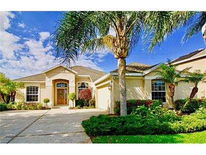 14150 FOX GLOVE ST, Winter Garden, FL