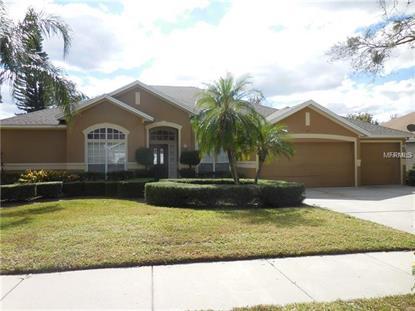 359 BLUE STONE CIR Winter Garden, FL MLS# O5569349