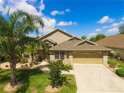 113 BREEZY OAKS CT, Davenport, FL