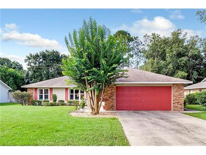 3260 MARY LN, Mount Dora, FL