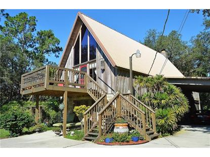 875 SNOW QUEEN DR Chuluota, FL MLS# O5720120