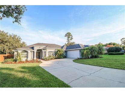 413 HAVILLAND CT, Debary, FL