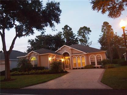 2310 TWICKINGHAM CT, Clermont, FL