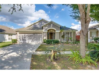 13007 EARLY RUN LN Riverview, FL MLS# O5745666