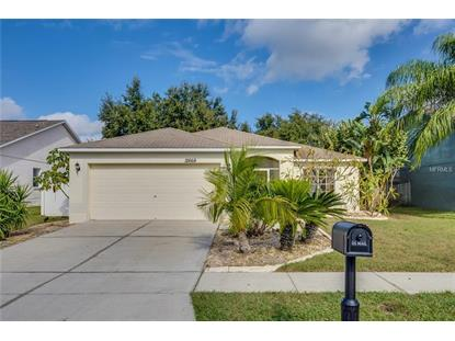 12668 LONGCREST DR Riverview, FL MLS# O5749824