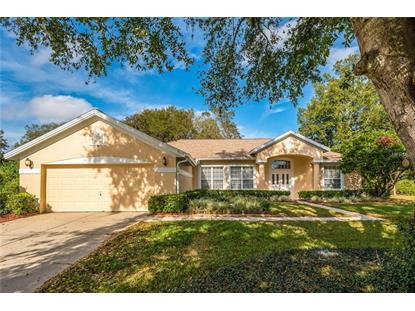9003 OAKCREST CIR Mount Dora, FL MLS# O5753408