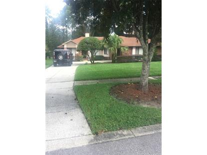 1527 BLACK BEAR CT Apopka, FL MLS# O5757145