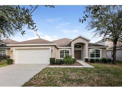 15511 STARLING WATER DR Lithia, FL MLS# O5757764