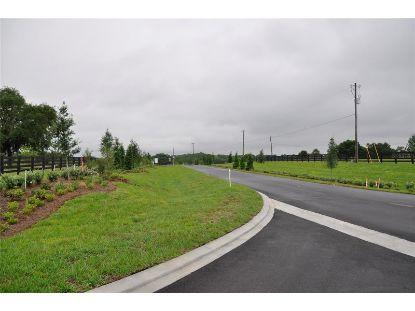 OAK POINT PRESERVE LOT 1 Clermont, FL MLS# O5841989