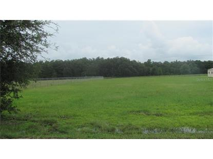 WELLS RD Mulberry, FL MLS# P4907275