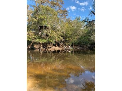 xxx RIVER RUN Quitman, GA MLS# P4911571