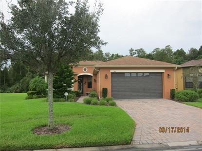 460 INDIAN WELLS AVE, Poinciana, FL