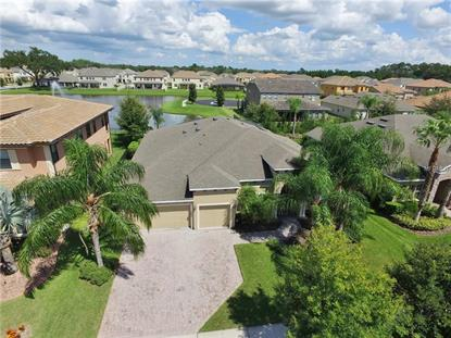 1541 CANOPY PASTURE DR, Saint Cloud, FL