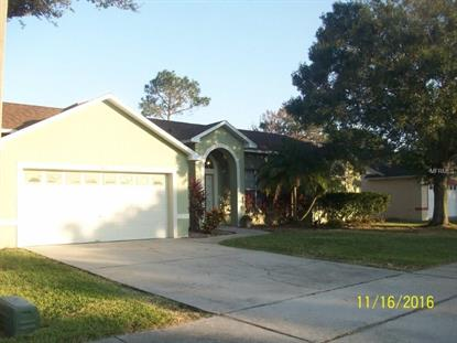 3837 BLACKBERRY CIR, Saint Cloud, FL