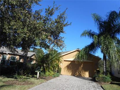 519 VINEYARD WAY, Poinciana, FL