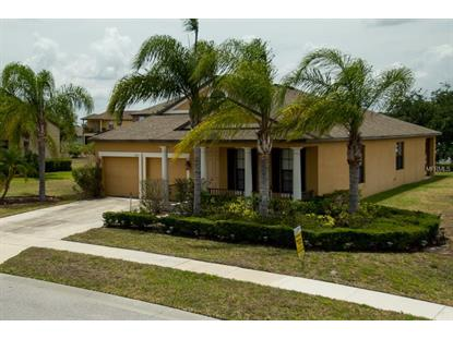 3101 SWINGLE DR, Kissimmee, FL