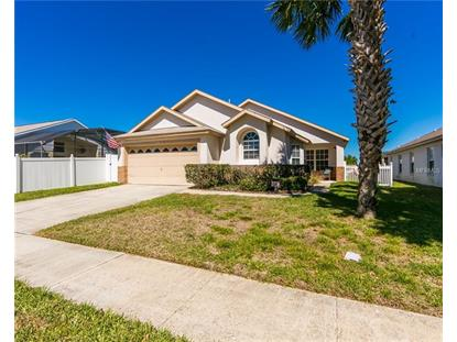 8065 INDIAN CREEK BLVD, Kissimmee, FL