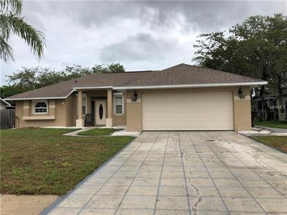 1325 PAPERWOODS DR, Saint Cloud, FL